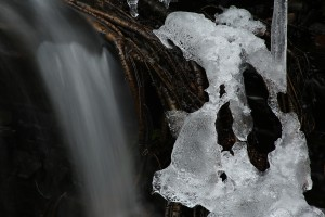 Ice formation beside a small cascade on the Allt Ruadh, or Red Burn, at Dundreggan.