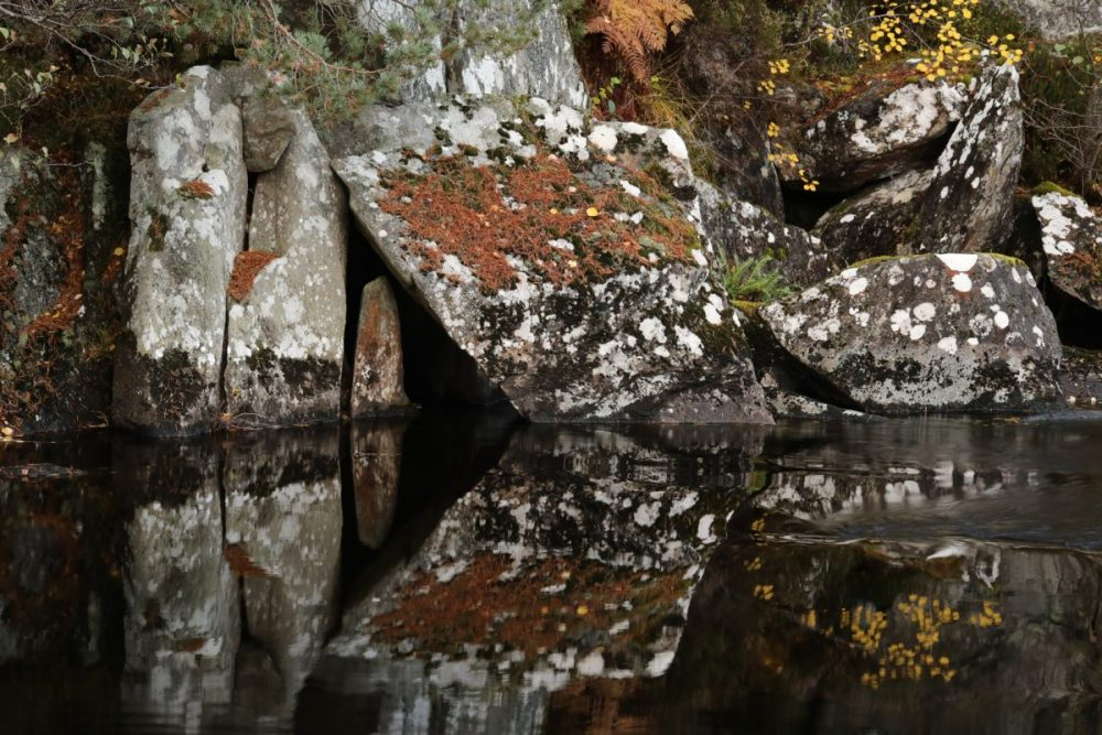 autumn, Caledonian Forest, Strathfarrar, reflection, water