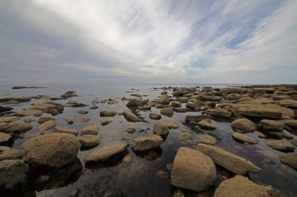 Coastal scene, Moray Firth, sandstone, dramatic view