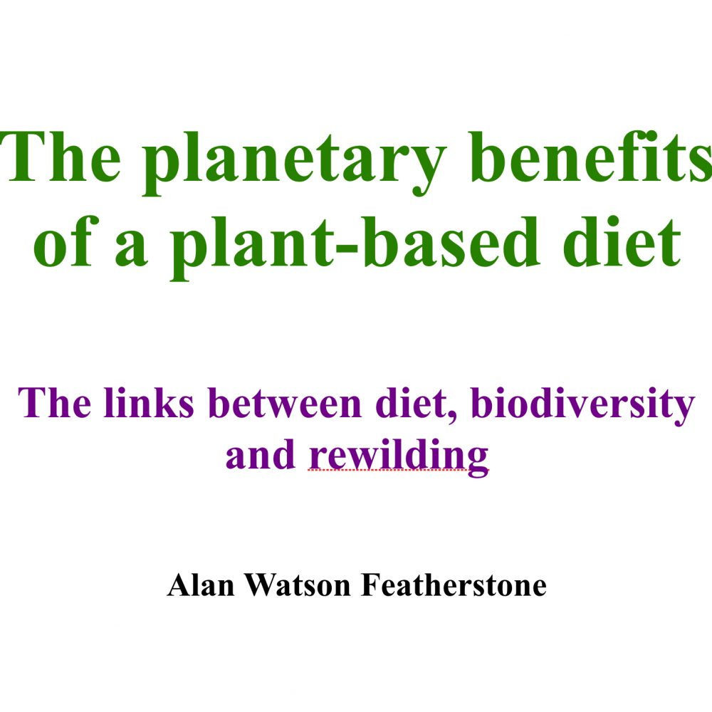 The planetary benefits of a plant-based diet