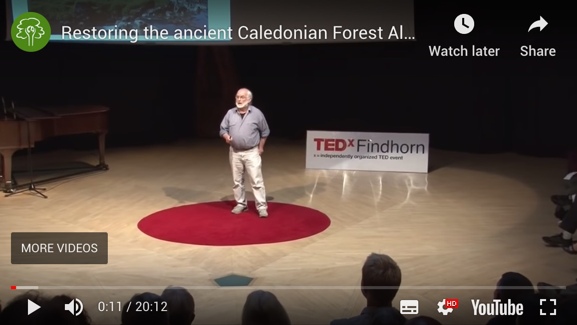 TEDx – Restoring the Caledonian Forest