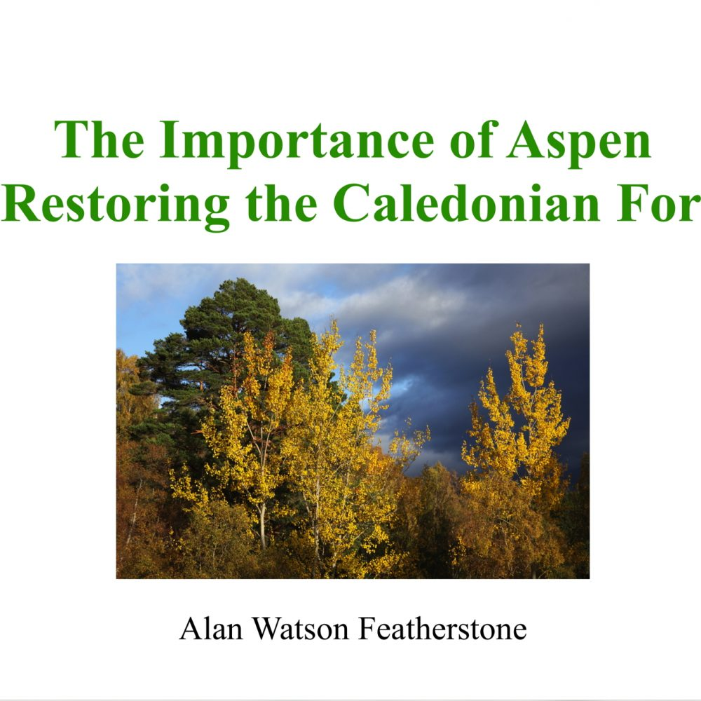 The Importance of Aspen in restoring the Caledonian Forest