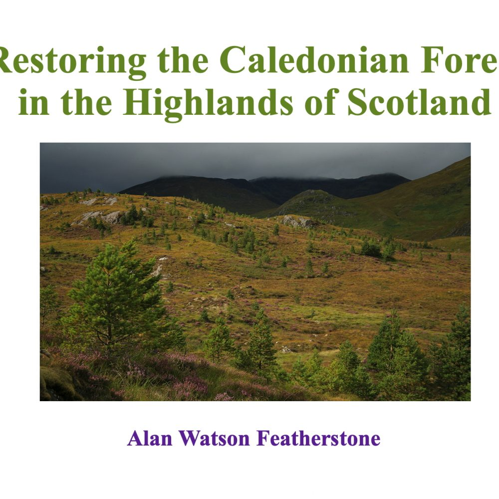 Restoring the Caledonian Forest