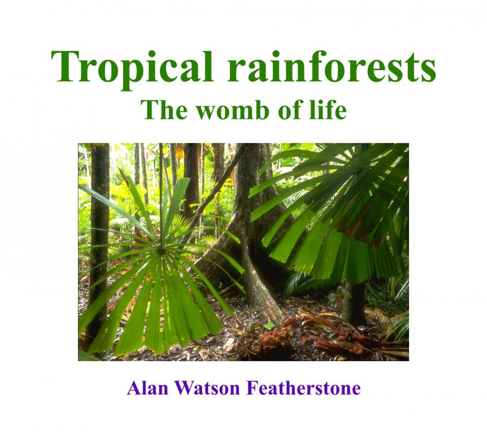 Tropical rainforests: the womb of life