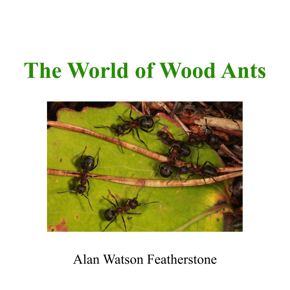 The World of Wood Ants
