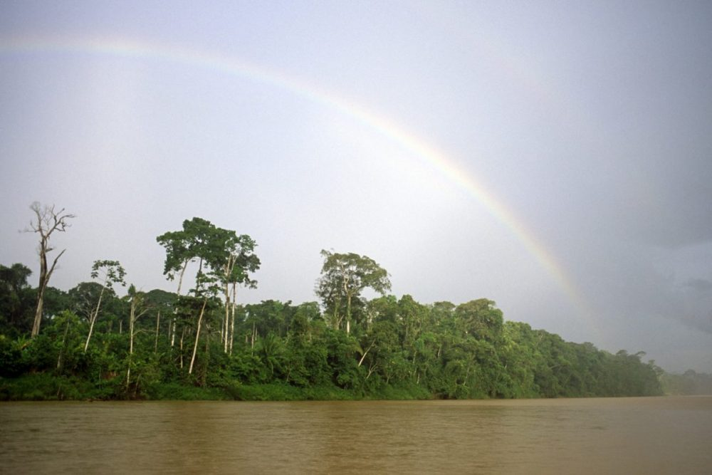 Rainbow, tropical rainforest, Amazon watershed,  Peru.